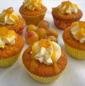 Mirabellen Cupcakes (1)