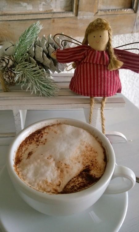Weihnachts Kakao Pulver (1)